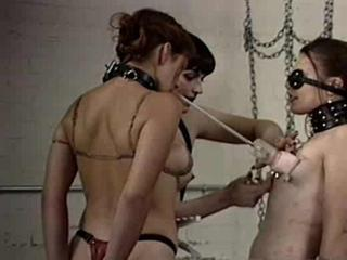 Porn Tube of Lesbians Tied Up And Tortured